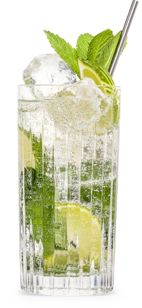 THE SOUTHSIDE A.K.A. THE GIN MOJITO